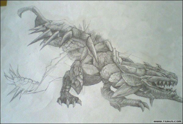 参赛作品022号 [手绘涂鸦]--怪物猎人之-=雌火龙=
